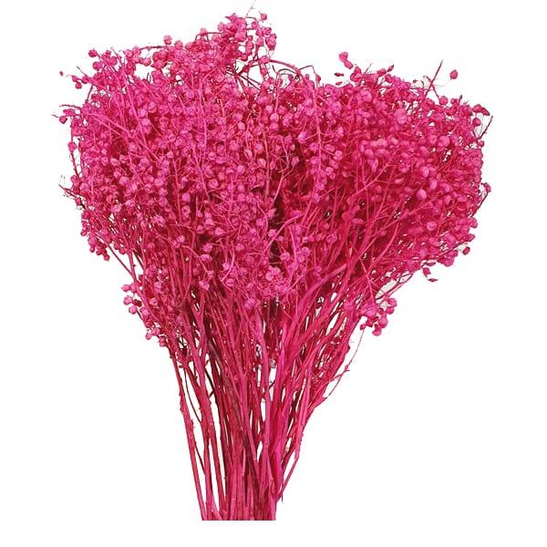 گل طبیعی